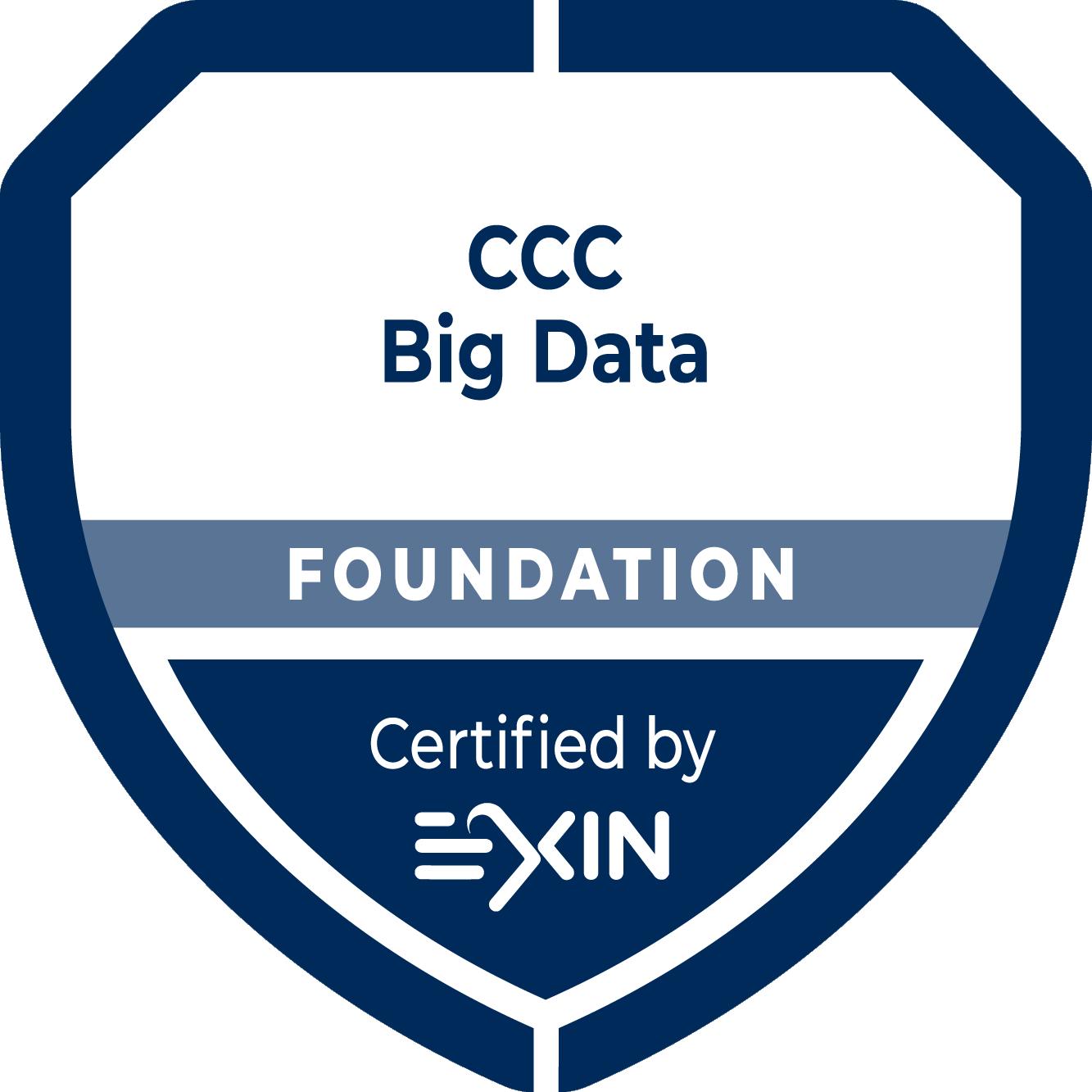 BIG DATA Foundation