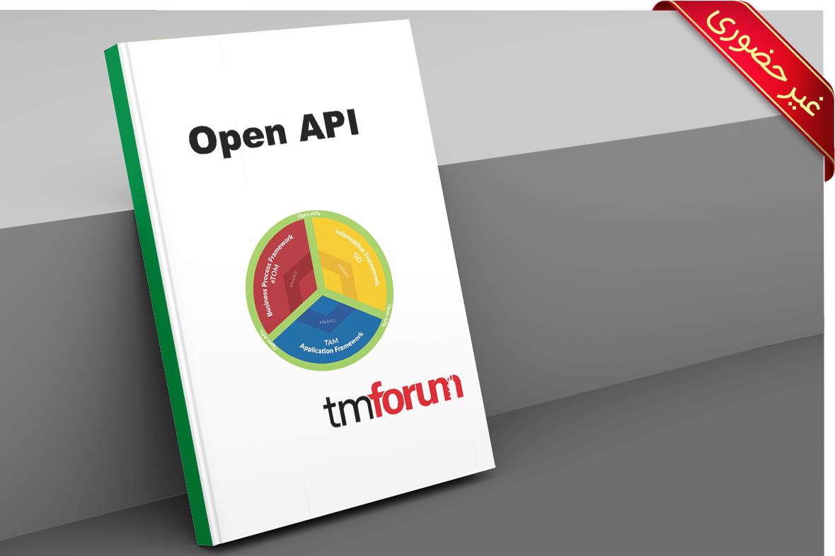 Open API Foundation & Practitioner